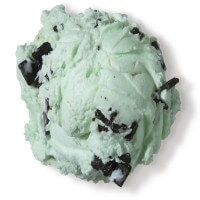 Mint Chocolate Chip Top